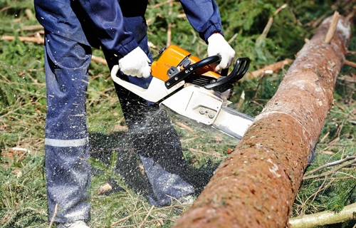 Protective clothing: lumberjack - Applications